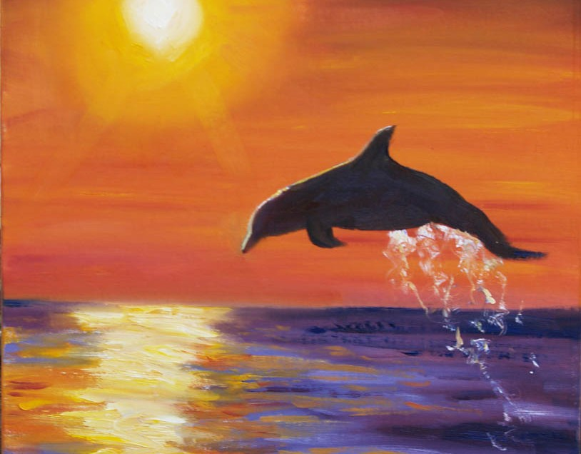 Y Flying Dolphins Flying Dolphin ...