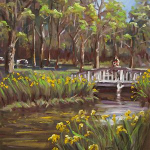 Yellow Irises Charleston landscape