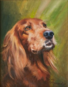 Ralph dog portrait