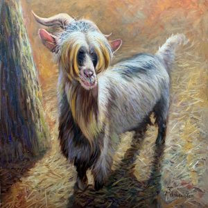 Goat Dwarf